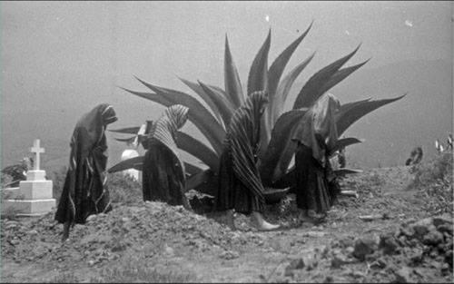 1951, Fototeca INAH